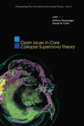 Open Issues In Core Collapse Supernova Theory
