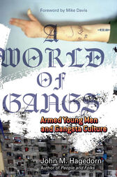 A World of Gangs by John M. M. Hagedorn