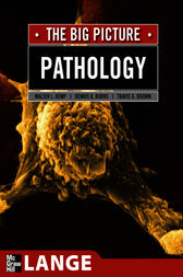 Pathology: The Big Picture by William Kemp