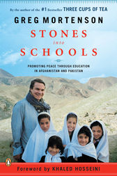 Stones into Schools