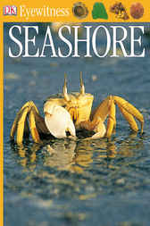 DK Eyewitness Books: Seashore by Steve Parker