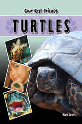 Our Best Friends: Turtles by Marie Devers