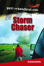 Storm Chaser by Joseph Gustaitis