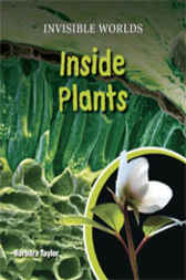 Inside Plants