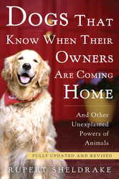 Dogs That Know When Their Owners Are Coming Home by Rupert Sheldrake