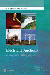 Electricity Auctions by Luiz Maurer
