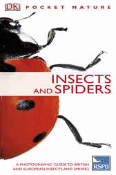 Insects by George C McGavin