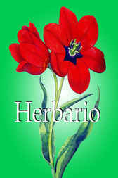 Herbario by Klaus Carl