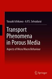 Transport Phenomena in Porous Media by Yasuaki Ichikawa