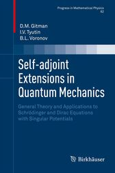 Self-adjoint Extensions in Quantum Mechanics by D.M. Gitman