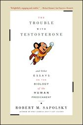 The Trouble With Testosterone by Robert M. Sapolsky