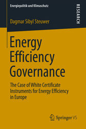 Energy Efficiency Governance by Dagmar Sibyl Steuwer