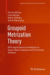 Groupoid Metrization Theory by Dorina Mitrea