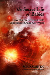 The Secret Life of Babies by Mia Dc Kalef
