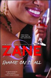 Shame on It All by Zane