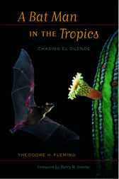 A Bat Man in the Tropics by Theodore Fleming