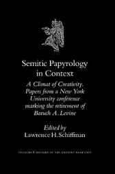 Semitic papyrology in context by L.H. Schiffman