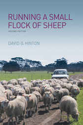 Running a Small Flock of Sheep by David G Hinton