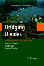 Bridging Divides by Stephan Gollasch