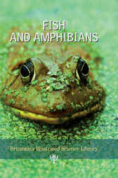 Fish and Amphibians by Encyclopaedia Britannica Inc.; Sol 90