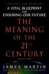 The Meaning of the 21st Century by James Martin