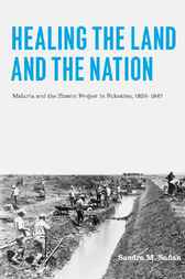 Healing the Land and the Nation by Sandra M. Sufian