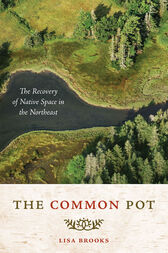 The Common Pot by Lisa Brooks