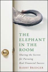 The Elephant in the Room by Barry Bridger