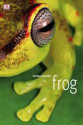 Frog by Thomas Marent
