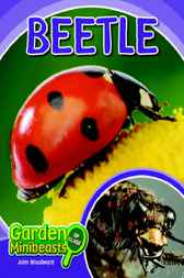 Beetle by John Woodward