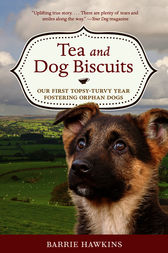 Tea and Dog Biscuits by Barrie Hawkins