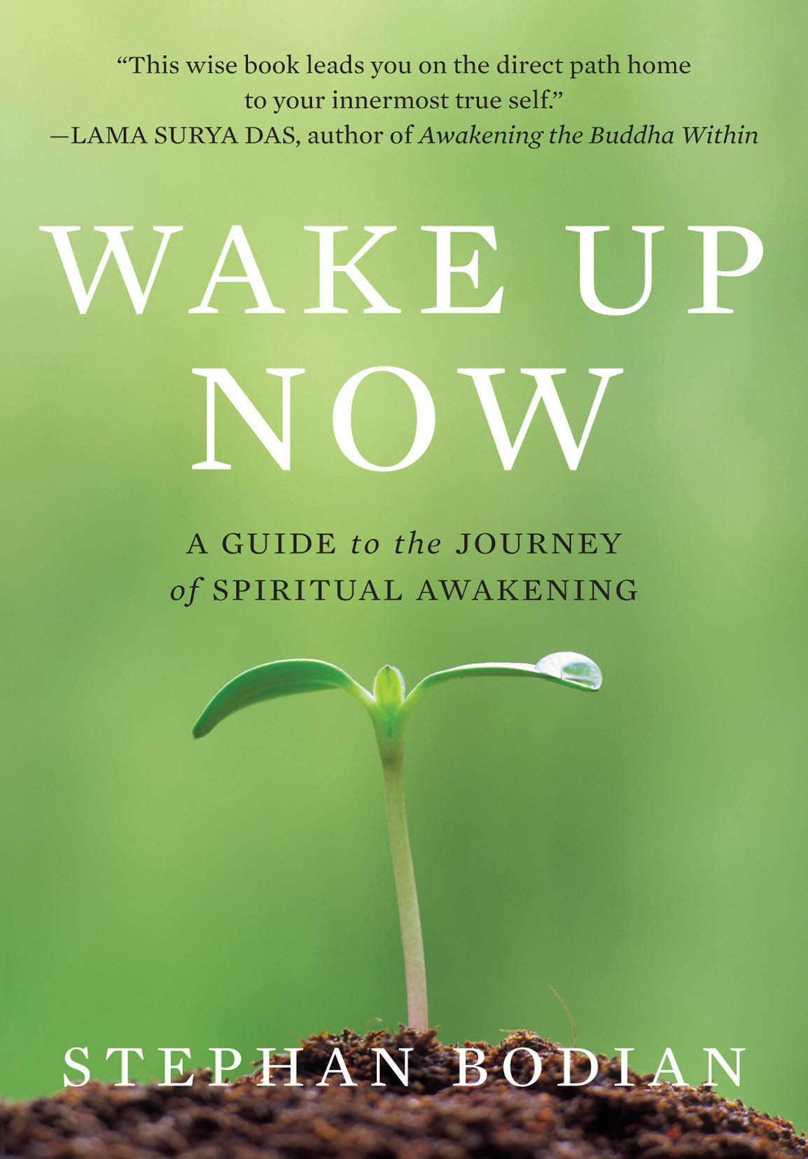 Download Ebook Wake Up Now by Stephan Bodian Pdf