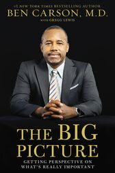 The Big Picture by M.D. Carson