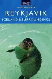 Reykjavik Iceland & Its Surroundings by Don Young