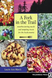 Fork in the Trail by Laurie Ann March