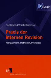 Praxis der Internen Revision by Thomas Amling