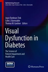 Visual Dysfunction in Diabetes by Joyce Tombran-Tink