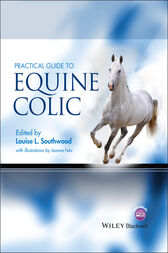 Practical Guide to Equine Colic by Louise L. Southwood