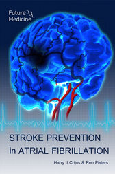 stroke prevention e book pdf