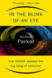 In The Blink Of An Eye by Andrew Parker