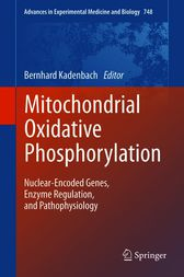 Mitochondrial Oxidative Phosphorylation by Bernhard Kadenbach