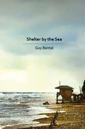 Shelter by the Sea by Guy Bental