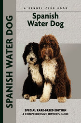Spanish Water Dog by Cristina Desarnaud