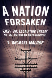 A Nation Forsaken by Michael Maloof