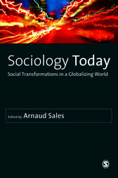 Sociology Today by Arnaud Sales
