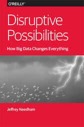 Disruptive Possibilities: How Big Data Changes Everything by Jeffrey Needham
