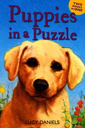 Puppies in a Puzzle by Lucy Daniels