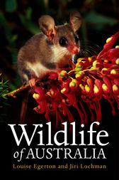 Wildlife of Australia by Louise Egerton