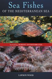 Sea Fishes Of The Mediterranean Including Marine Invertebrates by Lawson Wood