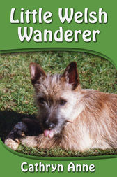 Little Welsh Wanderer by Cathryn Anne